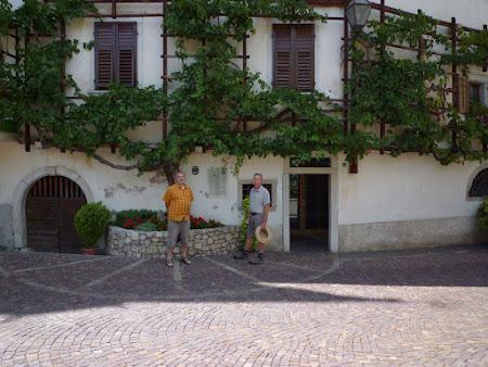 Bezoek aan oude wijnstok van 1601 te Italië Magrè-Magreid!