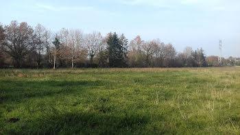 terrain à Plescop (56)