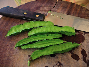 Photo: winged beans ready for cutting