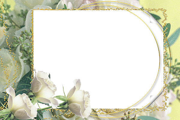 wedding photo frames hd screenshot