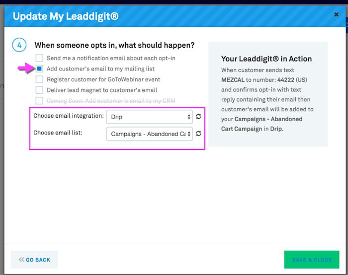 Leaddigit