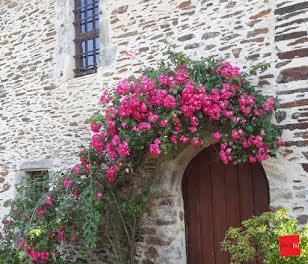 maison à Montigné-le-Brillant (53)