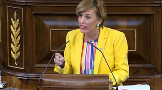 """La respuesta de Sonia Ferrer a Vox: """"Nos repugnan los homenajes a ETA"""""""
