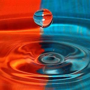 drops Dec 22 2011f1401.jpg