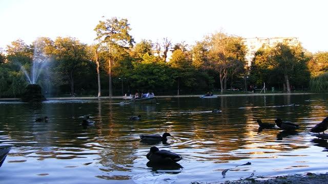 Cismigiu Lake in Cismigiu Garden BUCHAREST