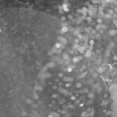 Wedding photographer Vasiliy Astapov (akiro). Photo of 21.10.2013