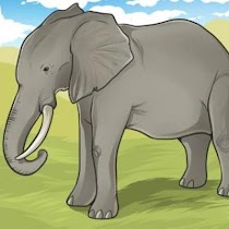 How To Draw Animals - screenshot thumbnail 06