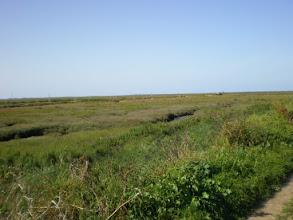 Photo: Norfolk Coast Path - From Warham to Wiveton - Blakney Eye