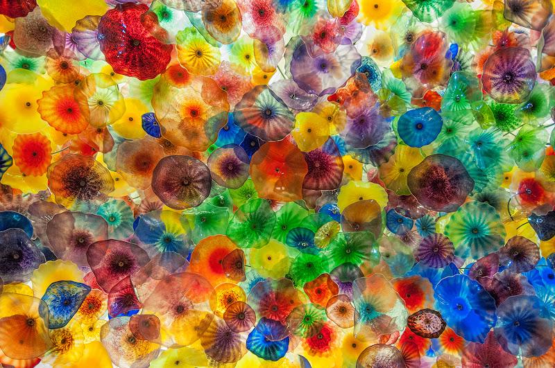 Fiori di vetro di Leyla