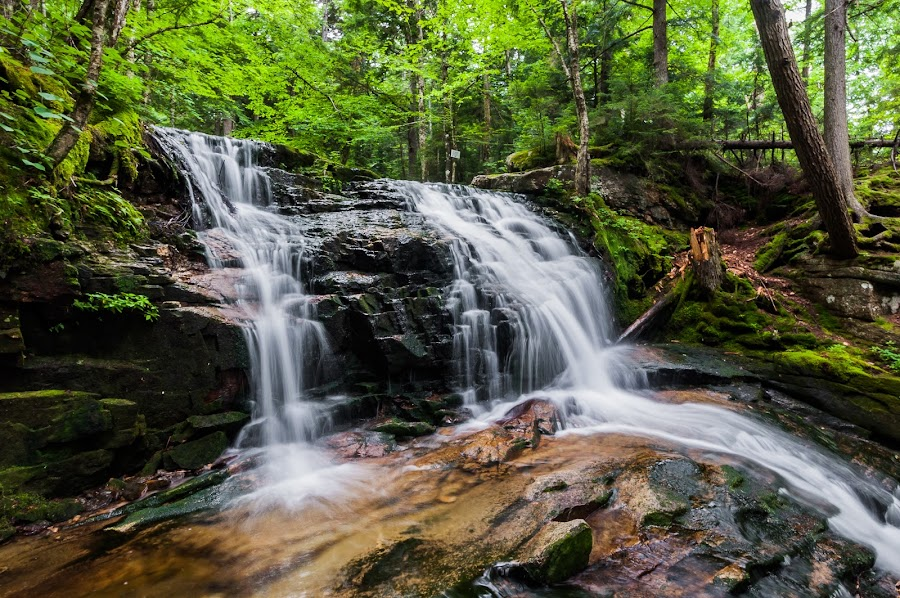 Appalachia waterfalls trail by Alex Zak - Landscapes Forests ( water, stream, waterfalls, appalchia, long exposure, forest )