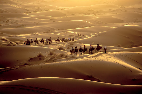 Desert Light di alberto raffaeli