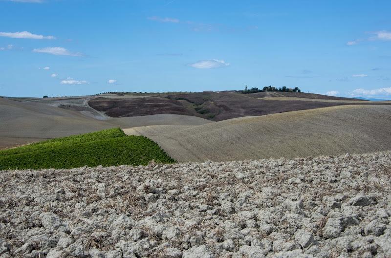 Tuscany fields di SCB