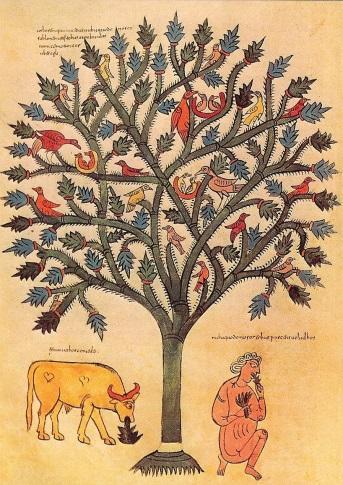 http://1.bp.blogspot.com/-CgjYjvcYPSE/Uw-4XnwPOtI/AAAAAAAAAKo/EYL92lUDww0/s1600/nebuchadnezzars-dream-tree.jpg