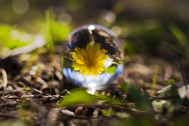 sphere di martaswiph