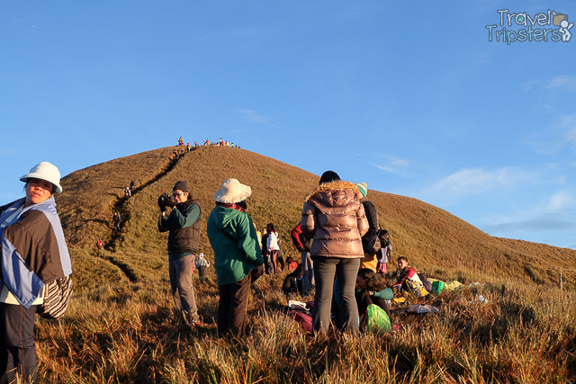 mt pulag peak 2