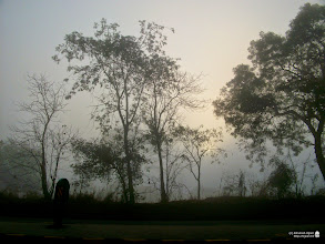 Photo: On the way to Jawhar - thick fog and very low visibility