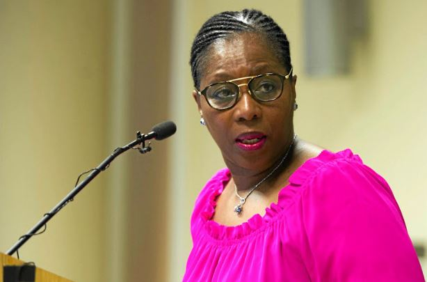 Public Service and Administration Minister Ayanda Dlodlo.