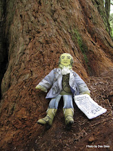 Photo: (Year 2) Day 360 - Thomas Jefferson Discovers His First Redwood