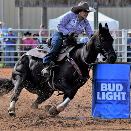 Barrel Racing by Priscilla Renda McDaniel - Sports & Fitness Rodeo/Bull Riding ( barrel racing, fans, woman, beautiful, horse, muscle, black horse, barrel,  )