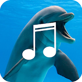 Relaxing Dolphin Sounds