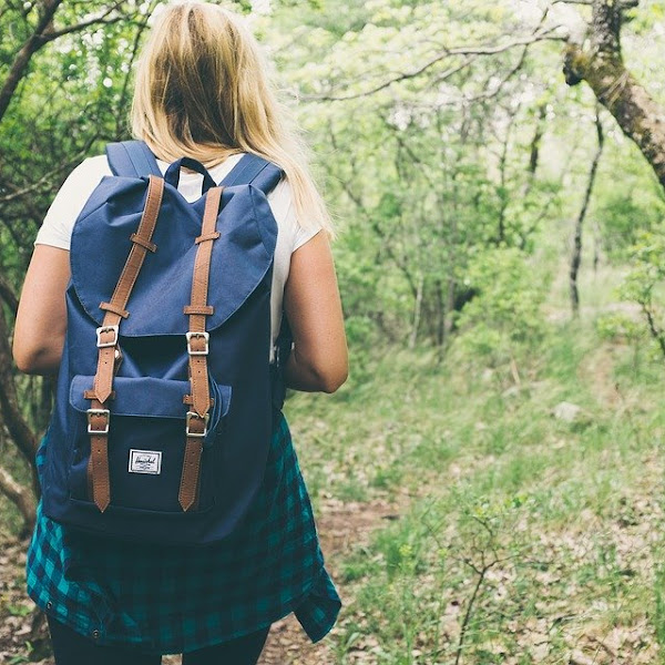 Using Travel To Develop Your Self-Education