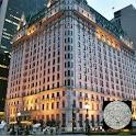 MapGuide: New York City icon