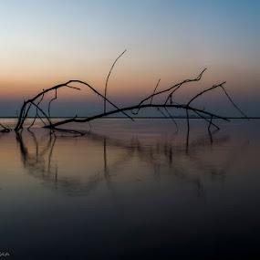 Picturesque Perfect by Rajesh Srinivasan - Landscapes Sunsets & Sunrises ( #dcp#dcpexpidition#akshibeach#rajeshsrinivasan#alibaug,  )