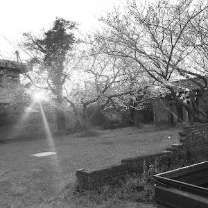 キャリイトラック  14y、63Tのカスタム事例画像 オンナ野郎(鈴木旧車倶楽部、NOB WORKS)さんの2019年04月04日22:17の投稿
