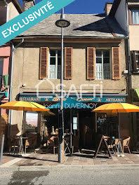 locaux professionels à Saint-Jean-Saint-Nicolas (05)