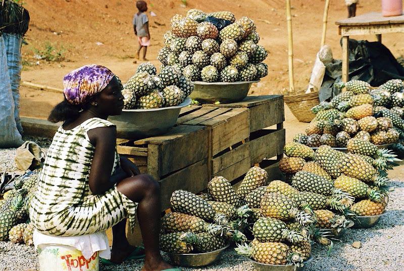 Ananassomania di paolo-spagg