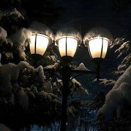 Night lights by Alina-Gabriela Baicu - Novices Only Objects & Still Life ( snow, night, dark, winter, lights, park, home )