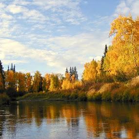Alaska 2001 by Nick Soefje - Landscapes Waterscapes ( hi-tech-photography.com, nick soefje )