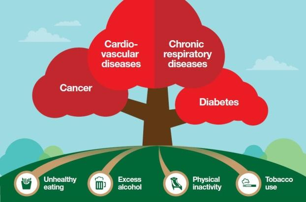 Image result for non communicable diseases