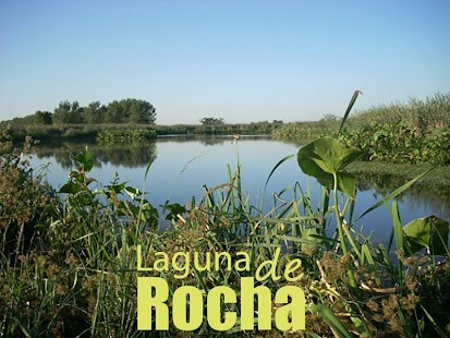 Laguna de Rocha- screenshot thumbnail