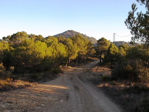 Montagut d'Ancosa