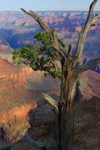 Photo: Point Moran, Grand Canyon
