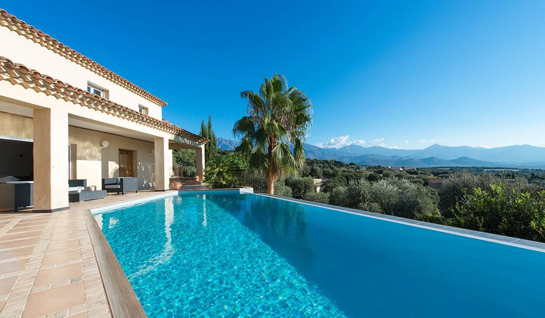 Villa avec piscine et jardin Calvi