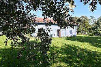 maison à Saint-Cyr-sur-Menthon (01)