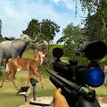 Wild Jungle Hunter