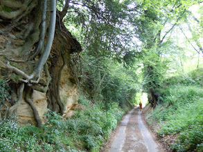 Photo: Pindapata walk to Midhurst