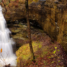Large Falls by Jamie Newton - Landscapes Waterscapes ( boston mountains, ozarks, water fall, spring )