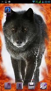 Wolves - náhled