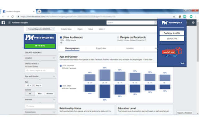 PreciseMagnetic for FB Audience Insights