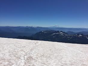 Photo: Mount Adams from Muir Snowfield