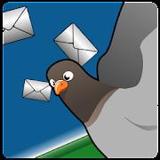 Pigeon Palava