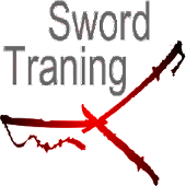 Sword Training