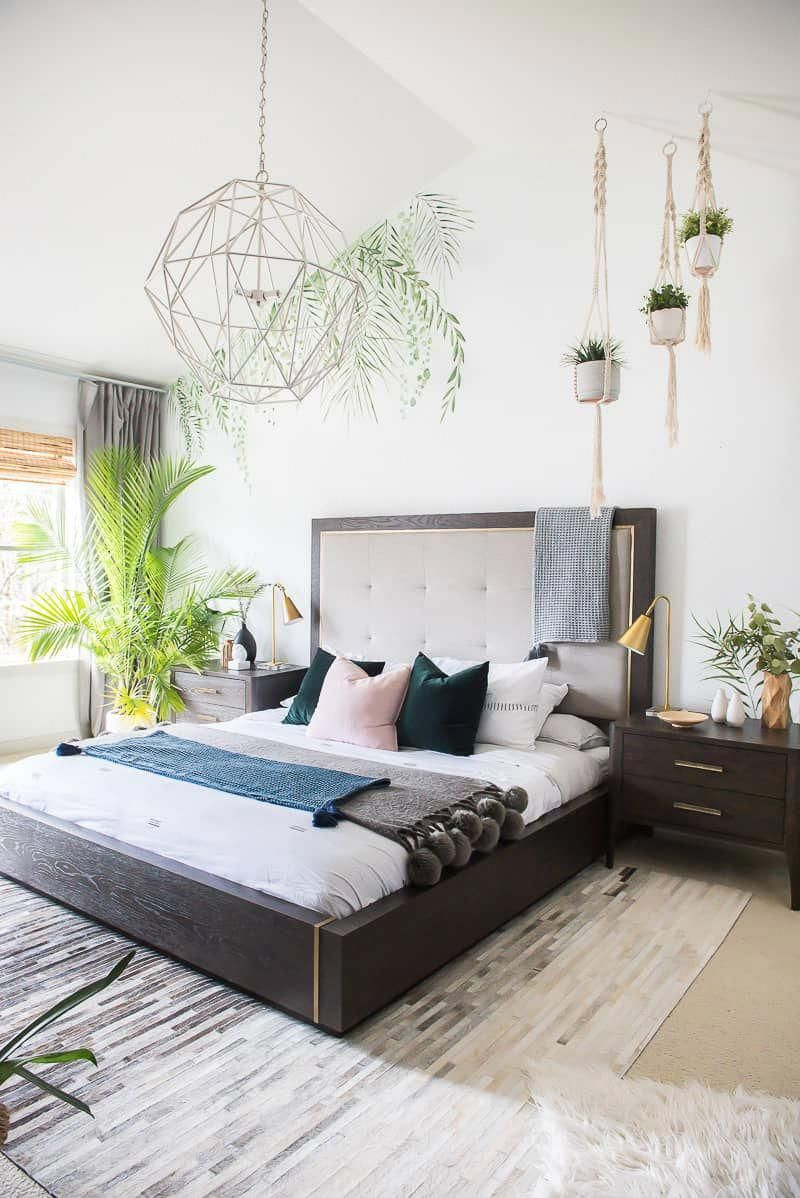 A Palm Tree brings You A Tropical Vibe