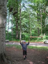 Photo: 'Love in the afternoon', værk af Hanne Tierney. 11 gynger hænger i lange reb fra det samme træ og i forskellige niveauer. Den laveste gynge hænger kun nogle få centimeter fra jorden - den højeste gynge dingler flere meter oppe i luften og kan kun nåes via de andre gynger.  Værket refererer til rokokotraditionen i 1700-tallet, hvor en idyllisk, bekymringsløs tilværelse og romantiske motiver blev favoritiseret - som fx. at gynge med en smuk kjole og hat.  Her kalder Tierney sine gynger for teater uden skuespillere. Først når de besøgene sætter sig i gyngen aktiverer de værket. William var vild med ideen om at gynge sig til de andre gynger - det lykkedes dog ikke, selvom vi kæmpede bravt :-)