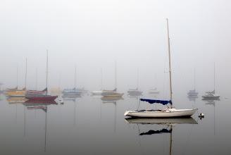 Photo: Flotilla in Fog