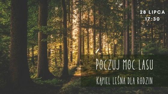 Poczuj moc lasu - kąpiel leśna dla rodzin